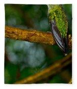 Green-crowned Brilliant Hummingbird Fleece Blanket