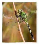 Green Dragonfly Closeup Fleece Blanket