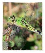 Green Dragonfly Macro Fleece Blanket