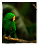 Green Eclectus Parrot Male Fleece Blanket