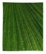 Green Fan - Radiating Lines And Scattered Polka-dots Fleece Blanket