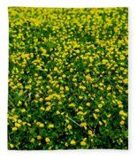 Green Field Of Yellow Flowers 3 Fleece Blanket