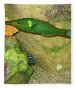 Green Fish Fleece Blanket