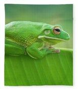Green Frog Whitelips Fleece Blanket