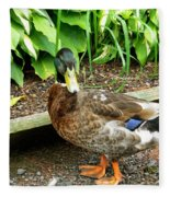 Green Head Mallard Duck 2 Fleece Blanket