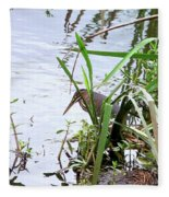 Green Heron Fleece Blanket