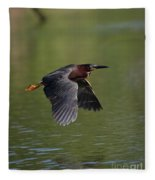 Green Heron In Flight Fleece Blanket