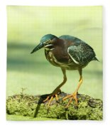 Green Heron In Green Algae Fleece Blanket
