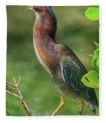 Green Heron Pose Fleece Blanket