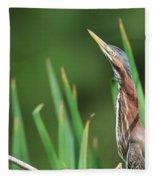 Green Heron Watches Fleece Blanket
