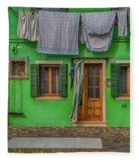 Green House And Hanging Wash_dsc5111_03042017 Fleece Blanket