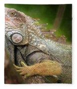 Green Iguana Costa Rica Fleece Blanket