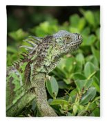 Green Iguana Vertical Fleece Blanket