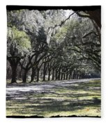 Green Lane With Live Oaks - Black Framing Fleece Blanket