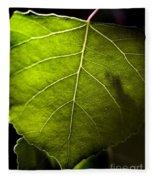 Green Leaf Detail Fleece Blanket