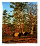 Green Pastures Fleece Blanket
