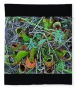 Northern Pitcher Plant Fleece Blanket