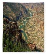 Green River Carving Canyon Fleece Blanket