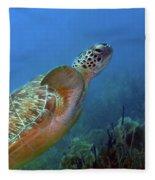 Green Sea Turtle 4 Fleece Blanket