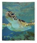 Green Sea Turtle Chelonia Mydas Fleece Blanket