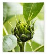 Green Sunflower Bud Fleece Blanket