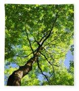 Summer Tree Canopy Fleece Blanket