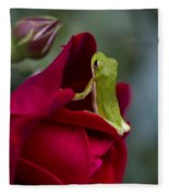Green Tree Frog And Red Roses Fleece Blanket