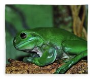 Green Tree Frog With A Smile Fleece Blanket