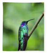Green Violet Ear Hummingbird Fleece Blanket