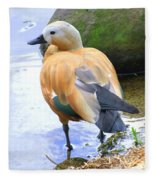 Green Winged Wood Duck 1 Fleece Blanket