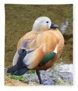 Green Winged Wood Duck 2 Fleece Blanket