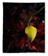 Greenbriar Leaf In Evening Sun Fleece Blanket