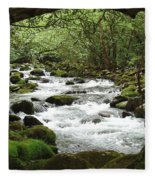 Greenbrier River Scene 2 Fleece Blanket