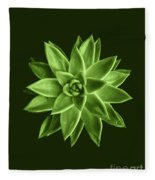 Greenery Succulent Echeveria Agavoides Flower Fleece Blanket