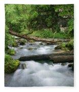 Greer Spring Branch 1 Fleece Blanket