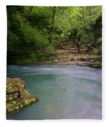 Greer Spring Fleece Blanket