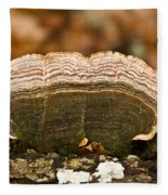 Grey Bracket Fungi Fleece Blanket