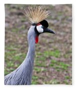 Grey Crowned Crain Of Africa 3 Fleece Blanket