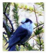 Grey Jay In A Juniper Tree Fleece Blanket