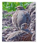 Grey Partridge Fleece Blanket