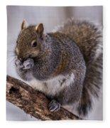 Grey Squirrel Fleece Blanket