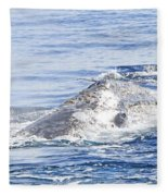 Grey Whale 2 Fleece Blanket