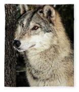 Grey Wolf Fleece Blanket