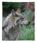 Grey Wolf Profile 2 Fleece Blanket