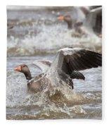 Greylag Goose Landing Fleece Blanket
