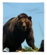 Grizzly-7746 Fleece Blanket