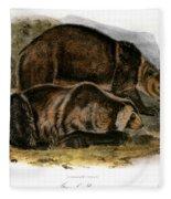 Grizzly Bear (ursus Ferox) Fleece Blanket