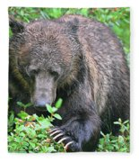Grizzly Claws Fleece Blanket