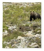Grizzly Watching People Watching Grizzly No. 3 Fleece Blanket