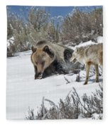 Grizzly With Coyote Fleece Blanket